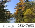 上高地 川 秋の写真 25847053