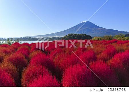 富士山 25853748
