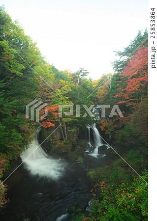 竜頭の滝 25853864