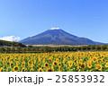 富士山 ひまわり 25853932