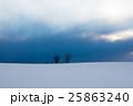 冬 木立 北海道の写真 25863240