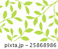 木の枝のバックグランド(黄緑色) 25868986