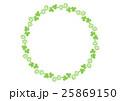 シロツメクサのフレーム() 25869150