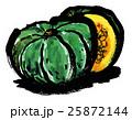 野菜 カボチャ 水彩のイラスト 25872144