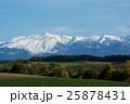 冠雪した山と秋の大地 25878431