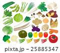 野菜のイラスト素材セット 25885347
