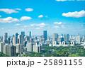 東京 風景 都市の写真 25891155