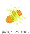 キワノ ツノニガウリ カットのイラスト 25911805
