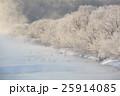 鶴 タンチョウ 樹氷の写真 25914085