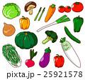 野菜 25921578