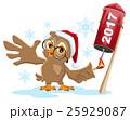 Owl Santa lights rocket fireworks 2017 25929087