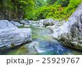 渓流 高知県仁淀川の支流 25929767
