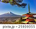 【山梨県】新倉山浅間公園 25939355