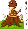 動物 爬虫類 ヘビのイラスト 25940587