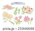 背景 花 菊科のイラスト 25946698