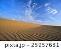 砂丘 鳥取砂丘 風紋の写真 25957631
