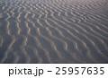 砂丘 鳥取砂丘 風紋の写真 25957635