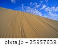 砂丘 鳥取砂丘 風紋の写真 25957639