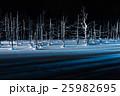 青い池 枯れ木 美瑛の写真 25982695