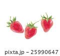 苺 イチゴ 25990647
