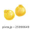 デコポン 果実 果物のイラスト 25990649
