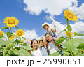 ひまわり畑で遊ぶ4人家族 25990651