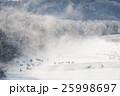 樹氷と霧とタンチョウの群れ 25998697