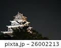 広島城(夜景)② 26002213