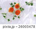 サーモン カナッペ 前菜の写真 26003478