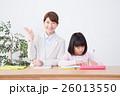 若い女性の家庭教師と小学生の女の子 26013550