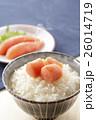 たらこ 鱈子 ご飯の写真 26014719