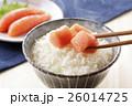 たらこ 鱈子 ご飯の写真 26014725