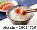 たらこ 鱈子 ご飯の写真 26014726