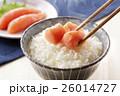 たらこ 鱈子 ご飯の写真 26014727