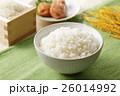 白米のご飯 26014992