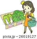 野菜 高値 女性 26019127