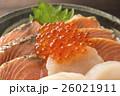 丼 和食 料理の写真 26021911