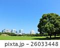青空 公園 広場の写真 26033448