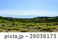 洞爺 西山山麓火口(第2展望台からの眺め) 26036173