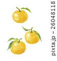 柚子 ユズ 26048118
