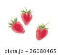 苺 イチゴ 26080465