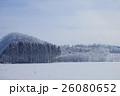 樹氷 26080652