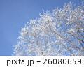 霧氷 26080659