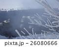 霧氷 26080666
