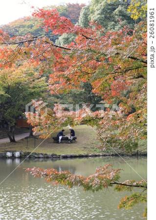 紅葉の下で仲良くお弁当を食べる老夫婦~大分県 用作公園~ 26081961