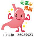 胃 健康 キャラクターのイラスト 26085923