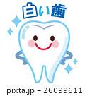 白い歯 キャラクター 26099611