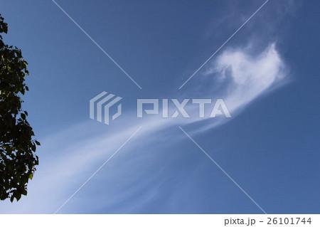 天女のような雲模様。 Clouds pattern 26101744