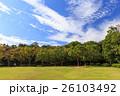 城 浜松城 出世城の写真 26103492