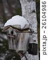 鳥の巣箱(冬) 26104986